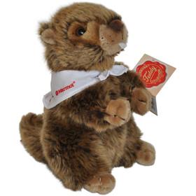 Marmot Cuddling Small, brown